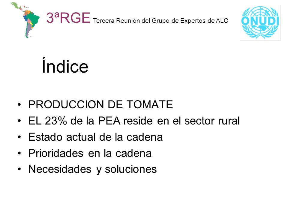 Índice PRODUCCION DE TOMATE EL 23% de la PEA reside en el sector rural Estado actual de la cadena Prioridades en la cadena Necesidades y soluciones 3ª