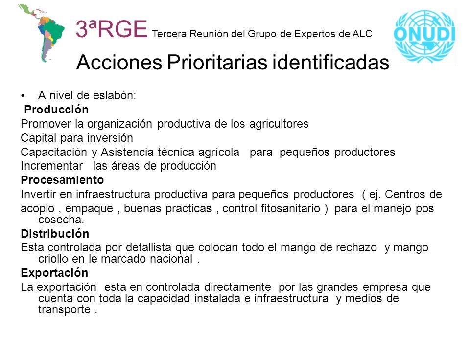 3ªRGE Tercera Reunión del Grupo de Expertos de ALC Acciones Prioritarias identificadas A nivel de eslabón: Producción Promover la organización product