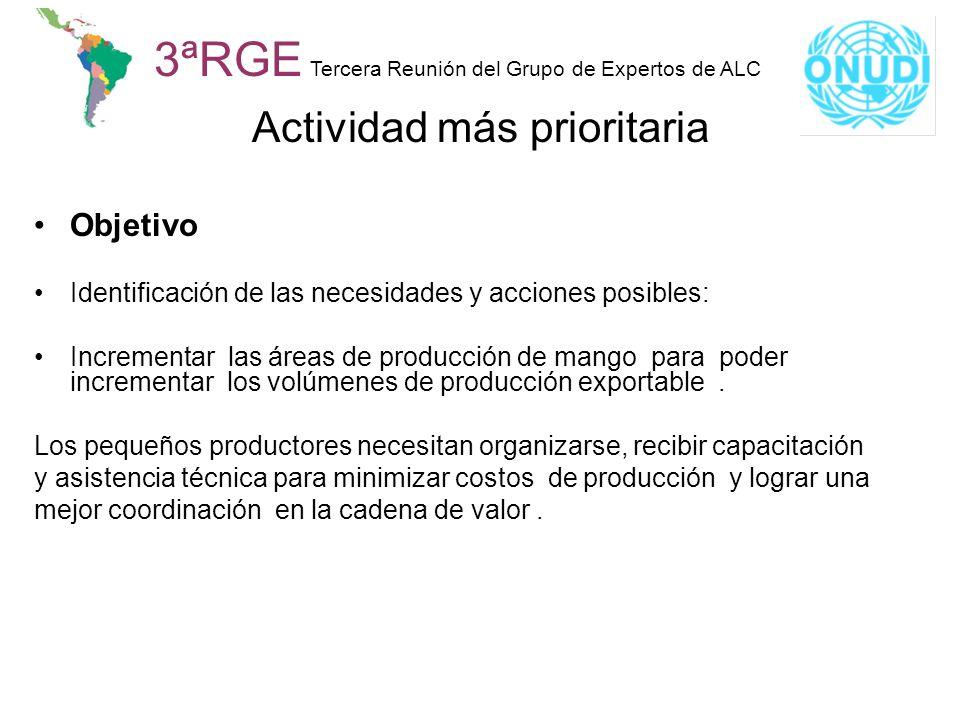 3ªRGE Tercera Reunión del Grupo de Expertos de ALC Actividad más prioritaria Objetivo Identificación de las necesidades y acciones posibles: Increment