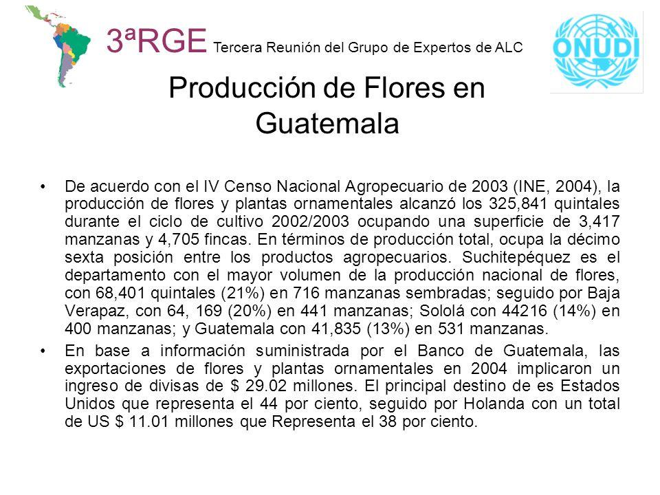 3ªRGE Tercera Reunión del Grupo de Expertos de ALC Producción de Flores en Guatemala De acuerdo con el IV Censo Nacional Agropecuario de 2003 (INE, 20