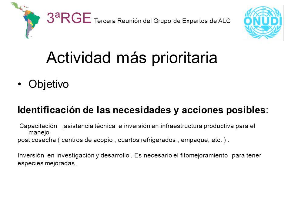 Actividad más prioritaria 3ªRGE Tercera Reunión del Grupo de Expertos de ALC Objetivo Identificación de las necesidades y acciones posibles: Capacitac