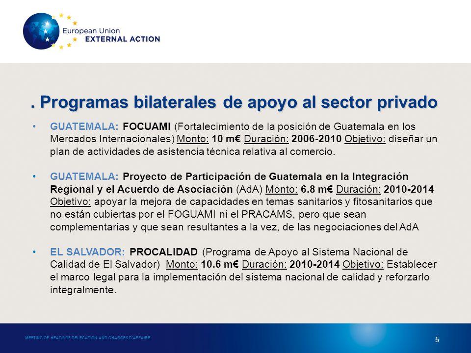 MEETING OF HEADS OF DELEGATION AND CHARGES DAFFAIRE 5 GUATEMALA: FOCUAMI (Fortalecimiento de la posición de Guatemala en los Mercados Internacionales) Monto: 10 m Duración: 2006-2010 Objetivo: diseñar un plan de actividades de asistencia técnica relativa al comercio.