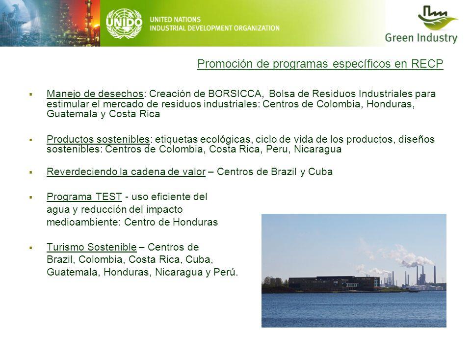 Promoción de programas específicos en RECP Manejo de desechos: Creación de BORSICCA, Bolsa de Residuos Industriales para estimular el mercado de resid