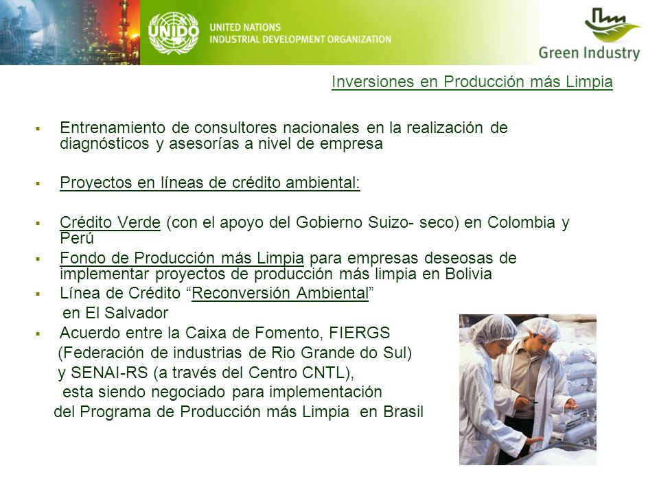 Inversiones en Producción más Limpia Entrenamiento de consultores nacionales en la realización de diagnósticos y asesorías a nivel de empresa Proyecto