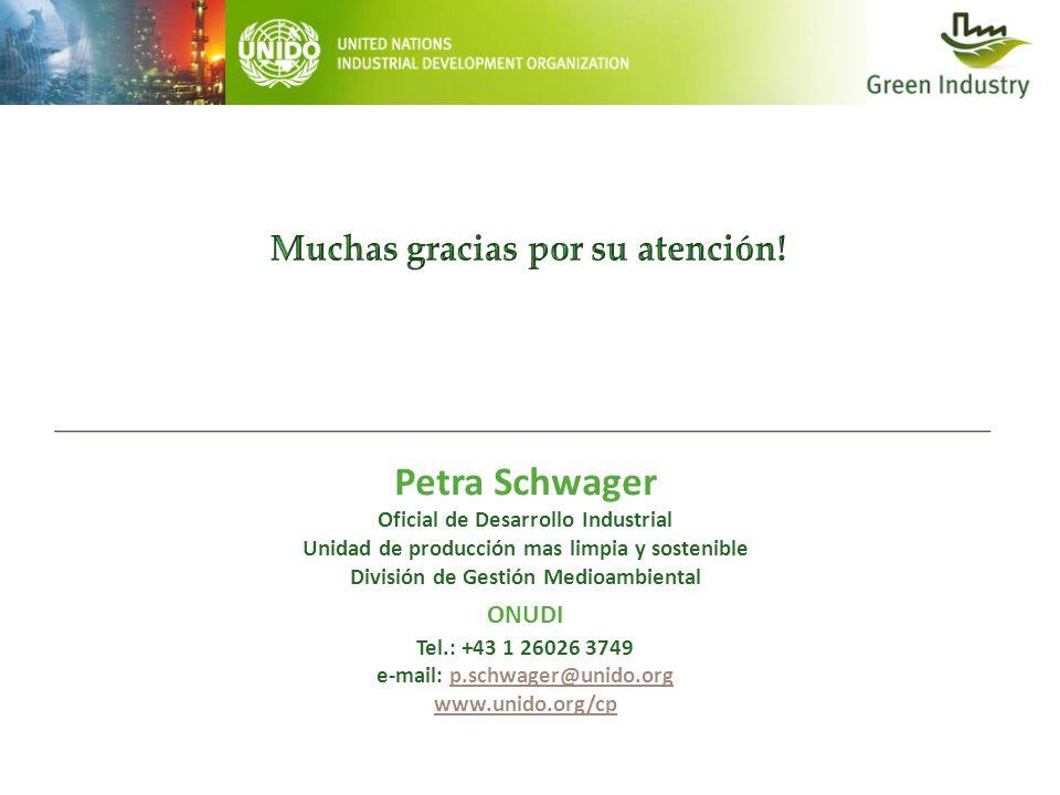 Petra Schwager Oficial de Desarrollo Industrial Unidad de producción mas limpia y sostenible División de Gestión Medioambiental ONUDI Tel.: +43 1 2602