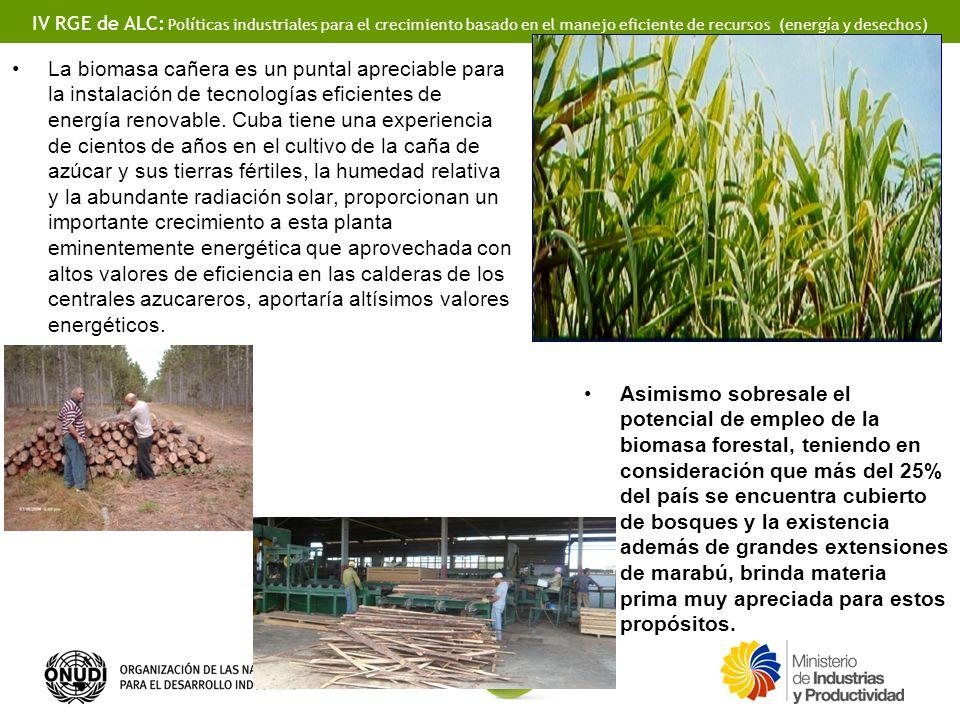 IV RGE de ALC: Políticas industriales para el crecimiento basado en el manejo eficiente de recursos (energía y desechos) La biomasa cañera es un puntal apreciable para la instalación de tecnologías eficientes de energía renovable.