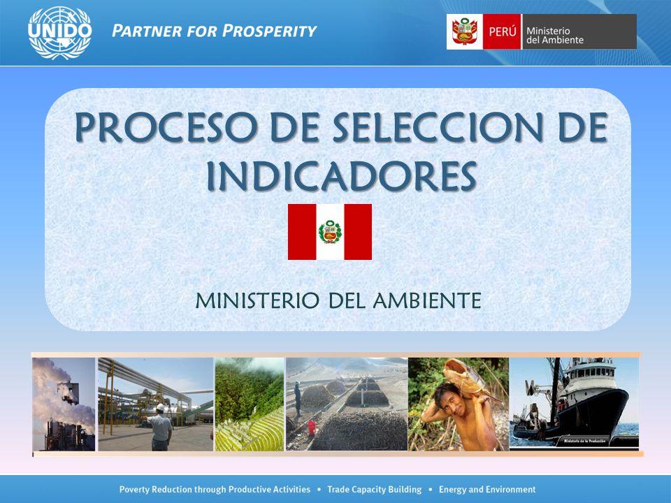 PROCESO DE SELECCION DE INDICADORES PROCESO DE SELECCION DE INDICADORES MINISTERIO DEL AMBIENTE