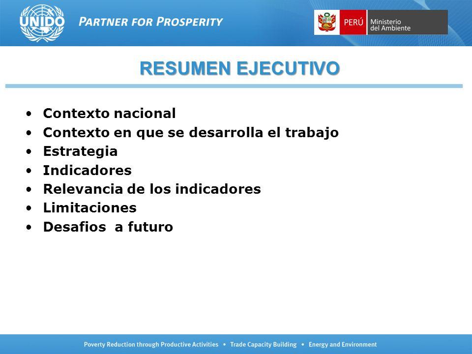 RESUMEN EJECUTIVO Contexto nacional Contexto en que se desarrolla el trabajo Estrategia Indicadores Relevancia de los indicadores Limitaciones Desafio