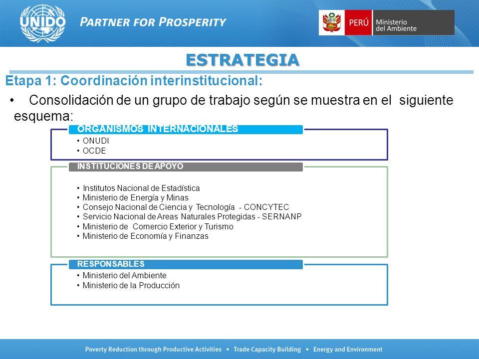 ESTRATEGIA Etapa 1: Coordinación interinstitucional: Consolidación de un grupo de trabajo según se muestra en el siguiente esquema: ONUDI OCDE ORGANIS