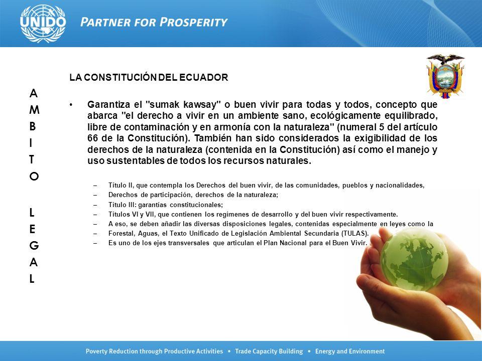 LA CONSTITUCIÓN DEL ECUADOR Garantiza el