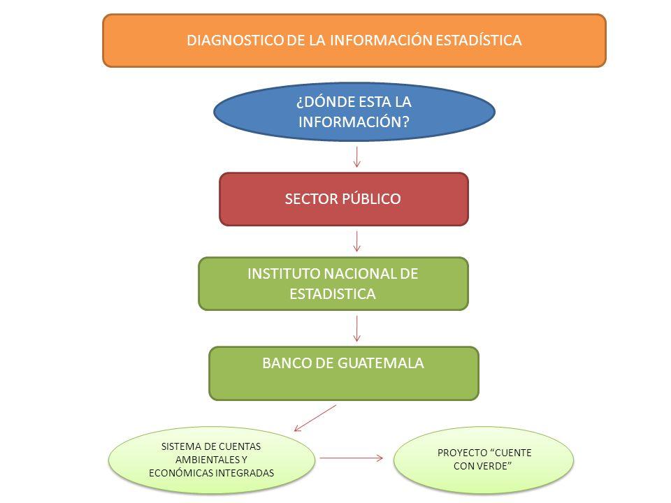 DIAGNOSTICO DE LA INFORMACIÓN ESTADÍSTICA ¿DÓNDE ESTA LA INFORMACIÓN? INSTITUTO NACIONAL DE ESTADISTICA BANCO DE GUATEMALA SISTEMA DE CUENTAS AMBIENTA