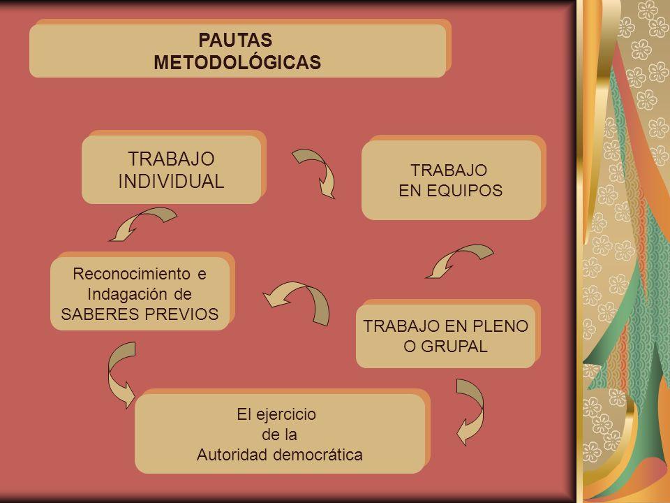 PAUTAS METODOLÓGICAS PAUTAS METODOLÓGICAS TRABAJO EN PLENO O GRUPAL TRABAJO EN PLENO O GRUPAL TRABAJO INDIVIDUAL TRABAJO INDIVIDUAL Reconocimiento e I
