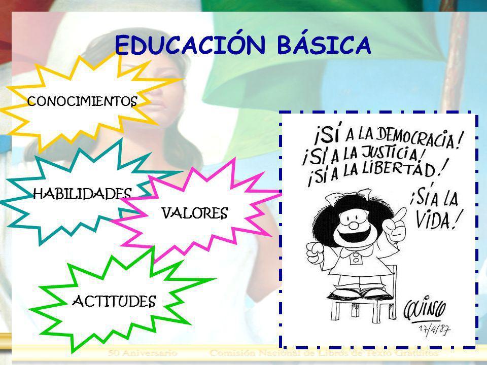 CONOCIMIENTOS HABILIDADES VALORES ACTITUDES EDUCACIÓN BÁSICA