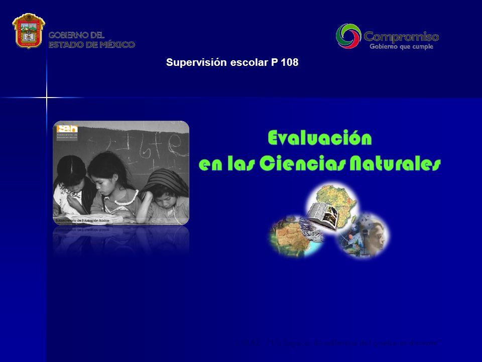 CMAZ Un espacio de reflexión del quehacer docente Supervisión escolar P 108