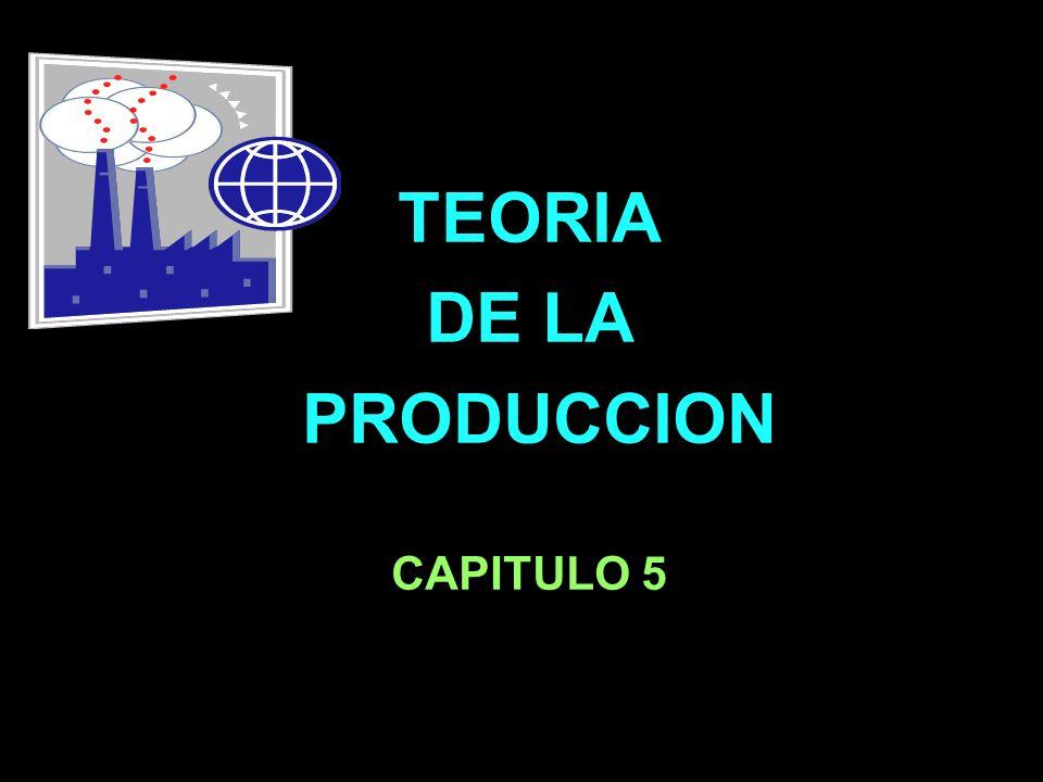 TEORIA DE LA PRODUCCION CAPITULO 5