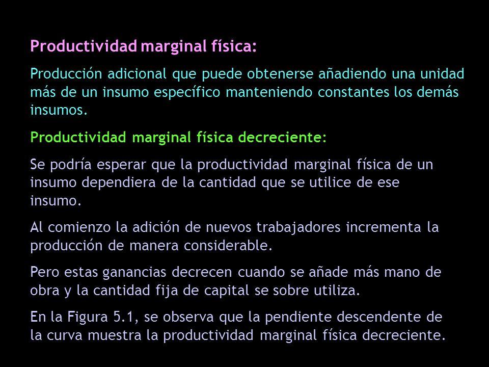 Productividad marginal física: Producción adicional que puede obtenerse añadiendo una unidad más de un insumo específico manteniendo constantes los de
