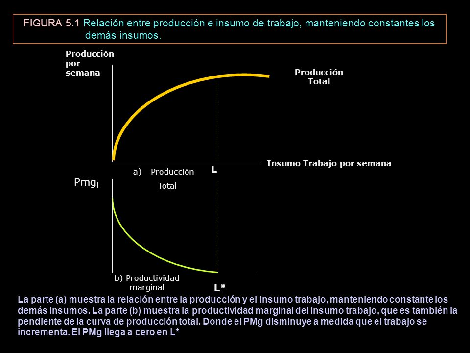 FIGURA 5.1 Relación entre producción e insumo de trabajo, manteniendo constantes los demás insumos. Producción Total Insumo Trabajo por semana Producc
