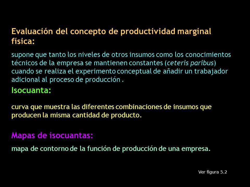 Evaluación del concepto de productividad marginal física: supone que tanto los niveles de otros insumos como los conocimientos técnicos de la empresa