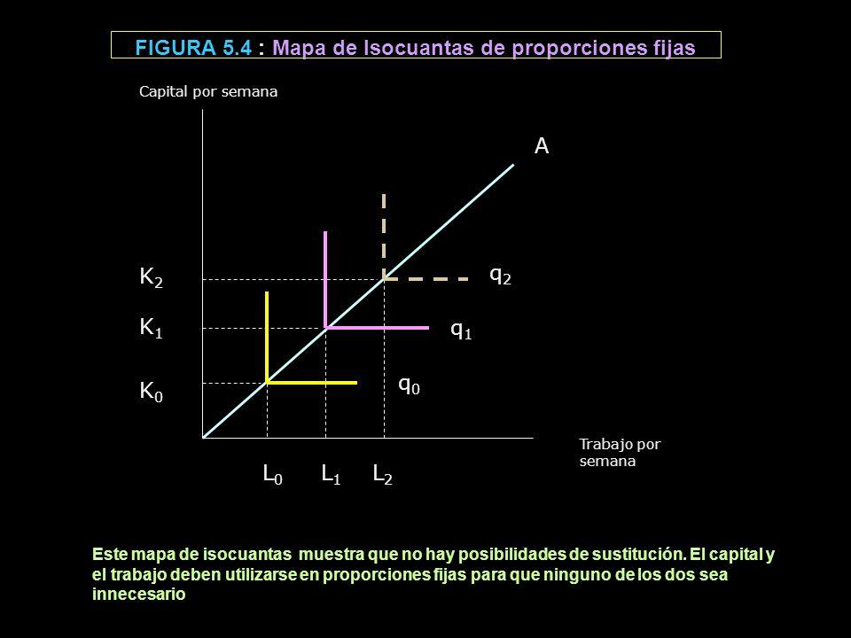 FIGURA 5.4 : Mapa de Isocuantas de proporciones fijas Trabajo por semana L 0 L 1 L 2 K2 K1 K0 K2 K1 K0 Capital por semana A q 0 q 1 q 2 Este mapa de i
