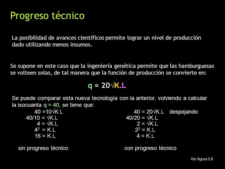 Progreso técnico La posibilidad de avances científicos permite lograr un nivel de producción dado utilizando menos insumos. Se supone en este caso que