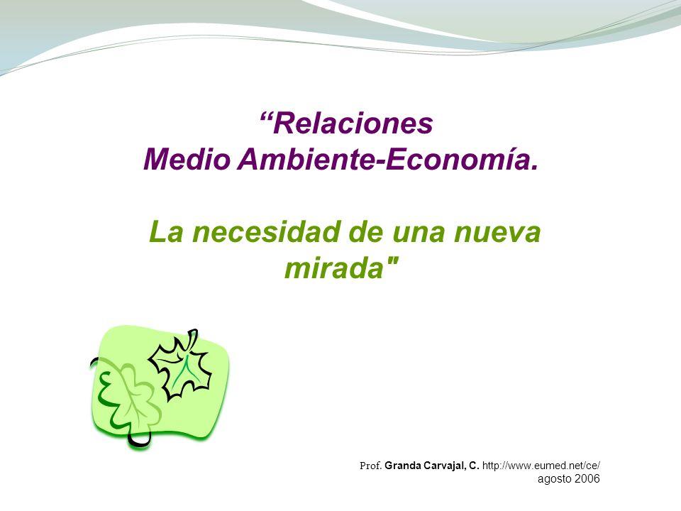 Relaciones Medio Ambiente-Economía. La necesidad de una nueva mirada
