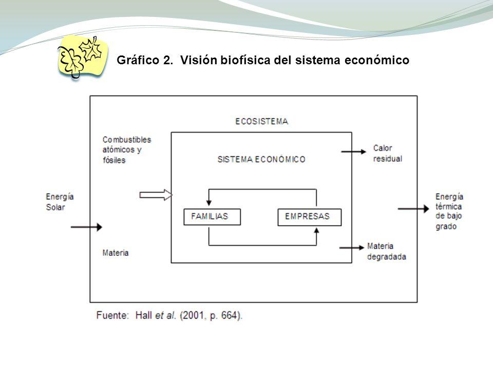 Gráfico 2. Visión biofísica del sistema económico