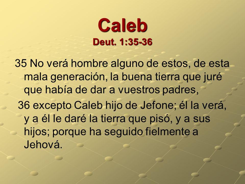 Caleb Deut. 1:35-36 35 No verá hombre alguno de estos, de esta mala generación, la buena tierra que juré que había de dar a vuestros padres, 36 except