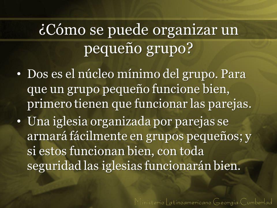¿Cómo se puede organizar un pequeño grupo? Dos es el núcleo mínimo del grupo. Para que un grupo pequeño funcione bien, primero tienen que funcionar la
