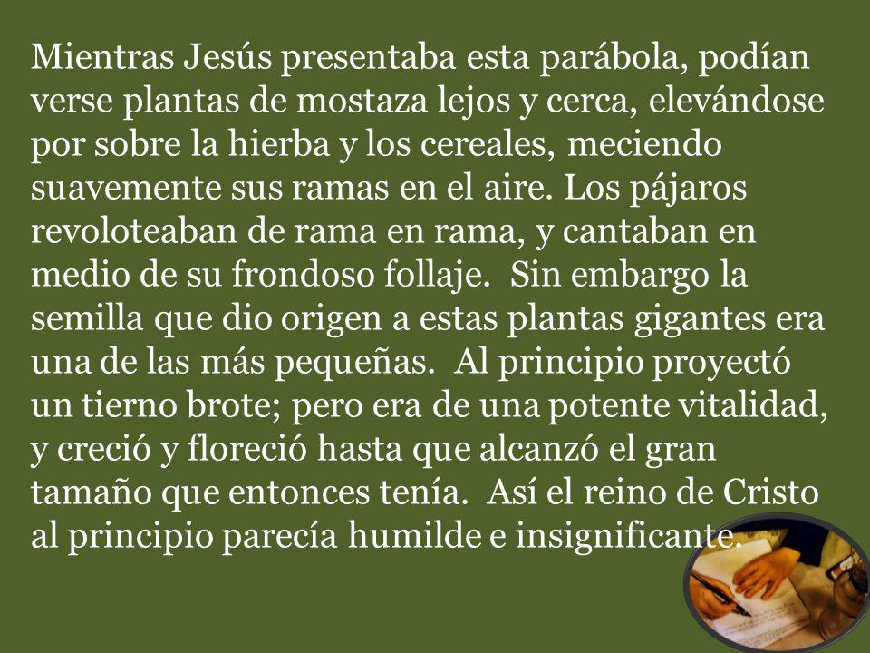 Mientras Jesús presentaba esta parábola, podían verse plantas de mostaza lejos y cerca, elevándose por sobre la hierba y los cereales, meciendo suavem