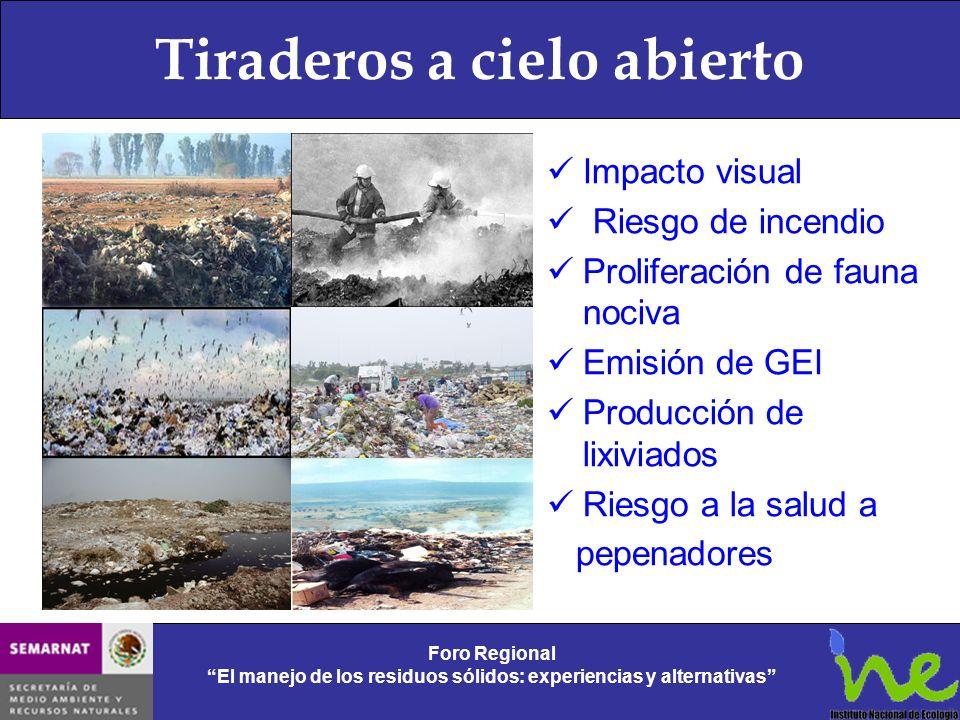 Tiraderos a cielo abierto Foro Regional El manejo de los residuos sólidos: experiencias y alternativas Foro Regional El manejo de los residuos sólidos