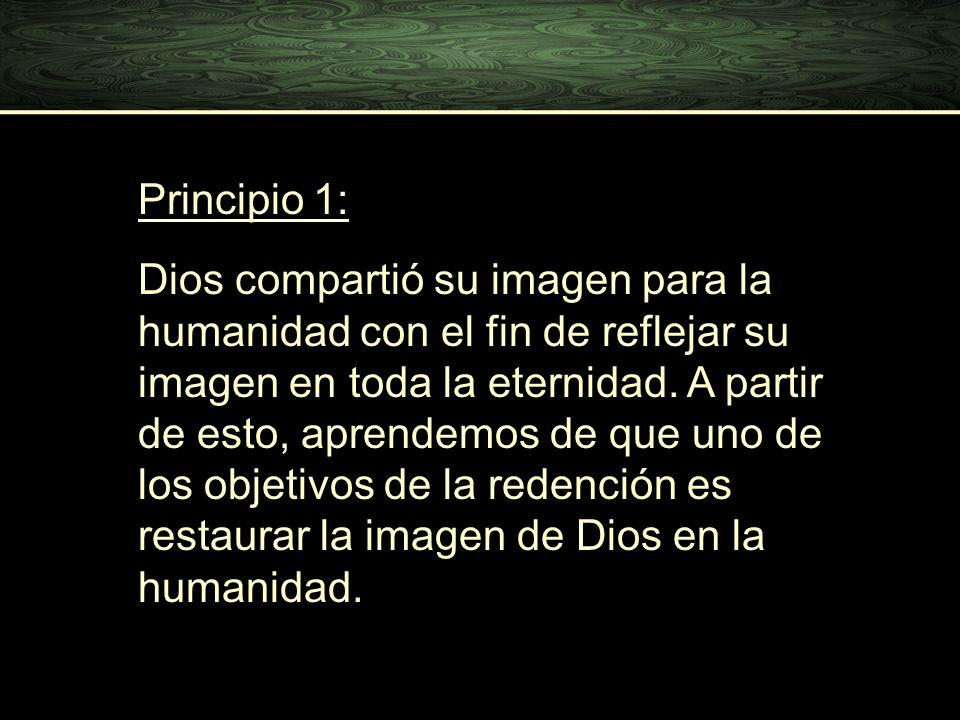 Principio 1: Dios compartió su imagen para la humanidad con el fin de reflejar su imagen en toda la eternidad. A partir de esto, aprendemos de que uno