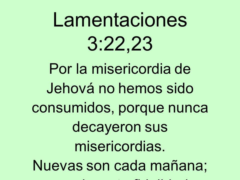 Lamentaciones 3:22,23 Por la misericordia de Jehová no hemos sido consumidos, porque nunca decayeron sus misericordias. Nuevas son cada mañana; grande