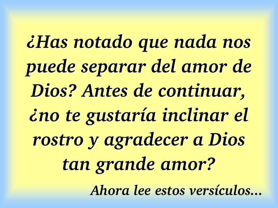 ¿Has notado que nada nos puede separar del amor de Dios? Antes de continuar, ¿no te gustaría inclinar el rostro y agradecer a Dios tan grande amor? Ah