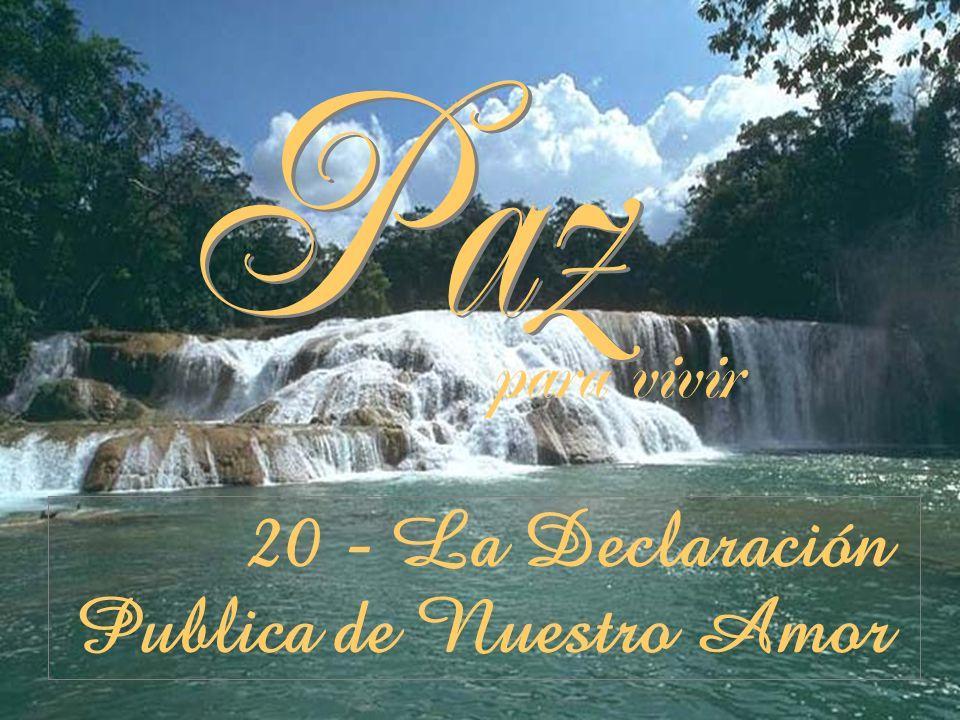 para vivir 20 - La Declaración Publica de Nuestro Amor