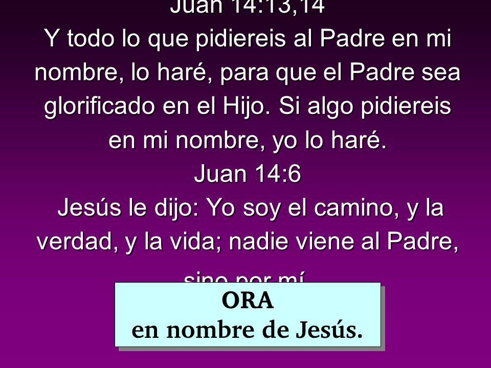 Juan 14:13,14 Y todo lo que pidiereis al Padre en mi nombre, lo haré, para que el Padre sea glorificado en el Hijo.