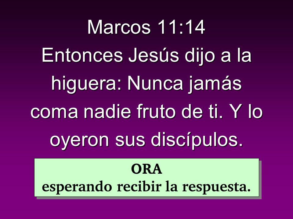 Marcos 11:14 Entonces Jesús dijo a la higuera: Nunca jamás coma nadie fruto de ti.