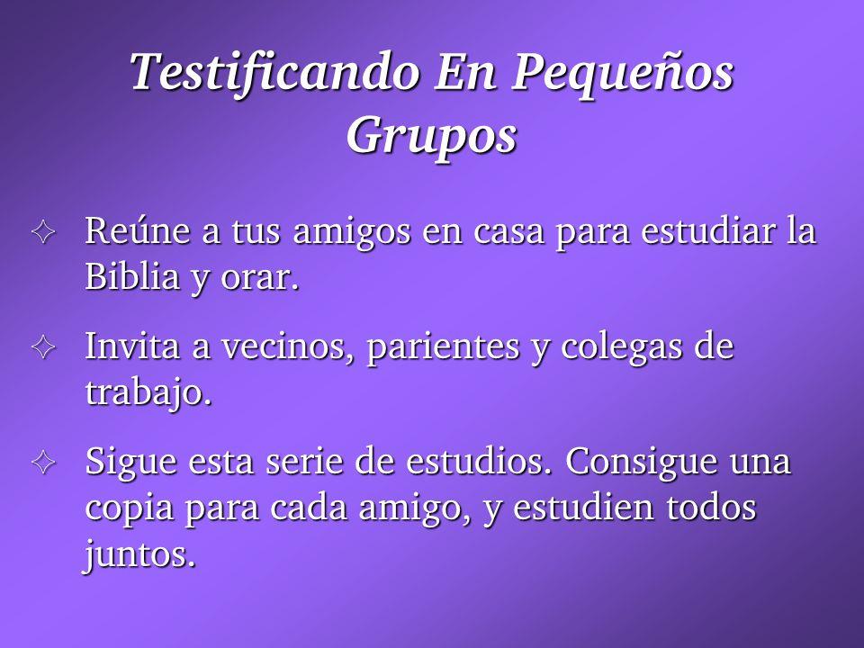 Testificando En Pequeños Grupos G Reúne a tus amigos en casa para estudiar la Biblia y orar. G Invita a vecinos, parientes y colegas de trabajo. G Sig