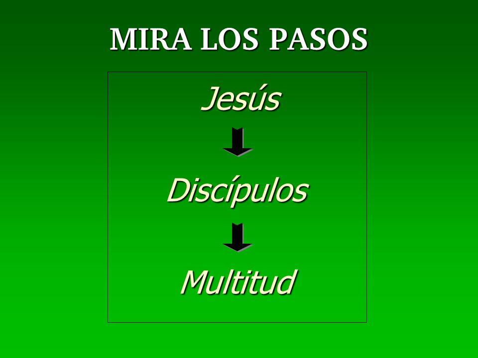 MIRA LOS PASOS Jesús Discípulos Multitud