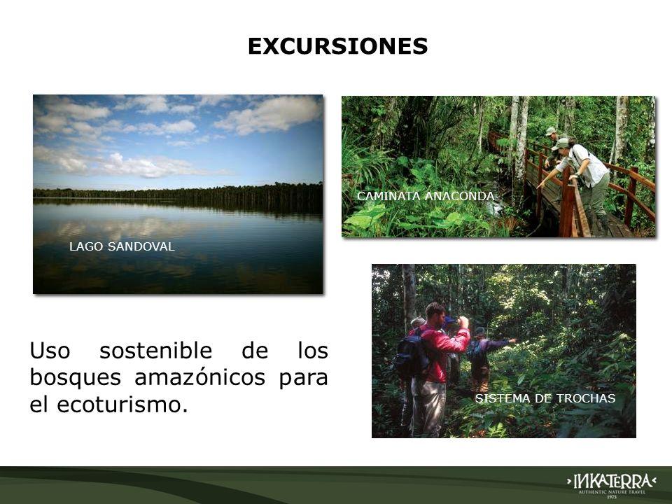 LAGO SANDOVAL EXCURSIONES CAMINATA ANACONDA SISTEMA DE TROCHAS Uso sostenible de los bosques amazónicos para el ecoturismo.