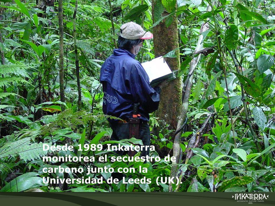 Desde 1989 Inkaterra monitorea el secuestro de carbono junto con la Universidad de Leeds (UK).