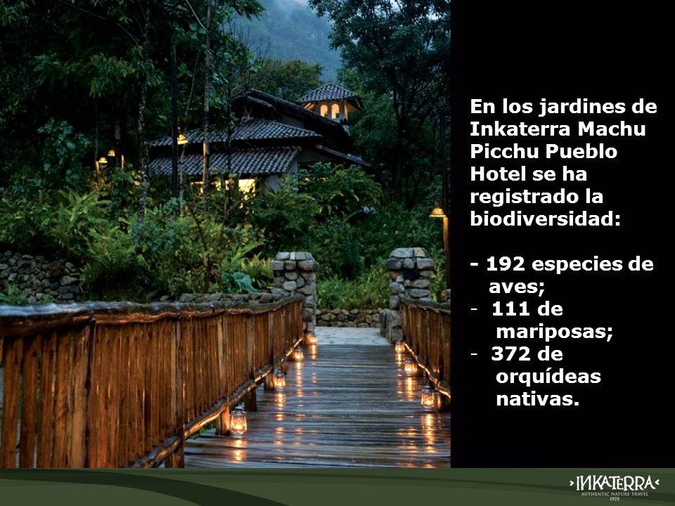 En los jardines de Inkaterra Machu Picchu Pueblo Hotel se ha registrado la biodiversidad: - 192 especies de aves; - 111 de mariposas; - 372 de orquíde