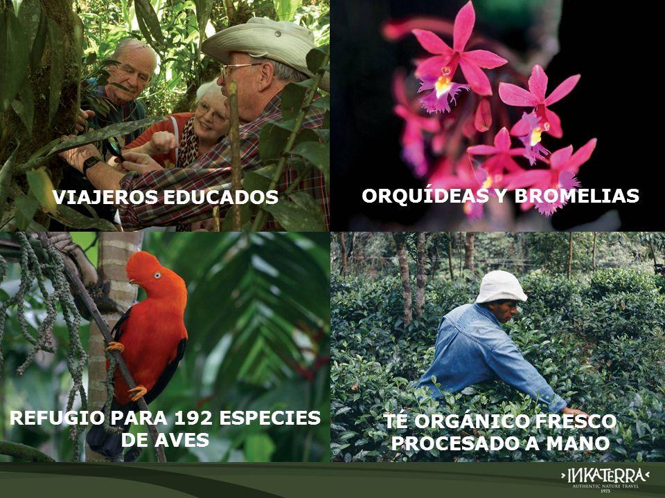 VIAJEROS EDUCADOS ORQUÍDEAS Y BROMELIAS REFUGIO PARA 192 ESPECIES DE AVES TÉ ORGÁNICO FRESCO PROCESADO A MANO