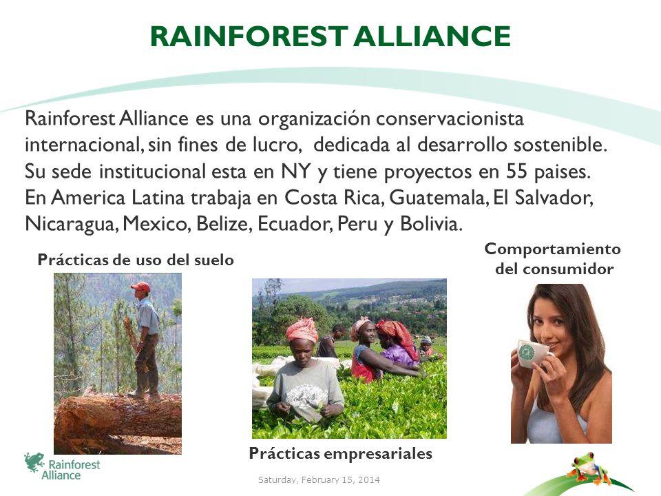 3 MISION DE RAINFOREST ALLIANCE Proteger los ecosistemas, así como las personas y la vida silvestre que dependen de ellos, mediante la transformación de las prácticas del uso del suelo, las prácticas comerciales y el comportamiento de los consumidores.