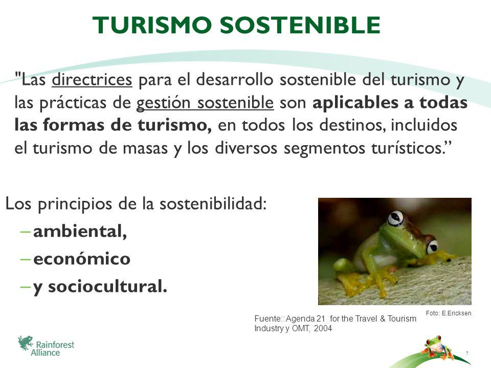 8 Eje Ambiental Eje Económico Eje Socio Cultural ecoeficiencia protección desarrollo con equidad Sostenibilidad Pilares del Turismo Sostenible