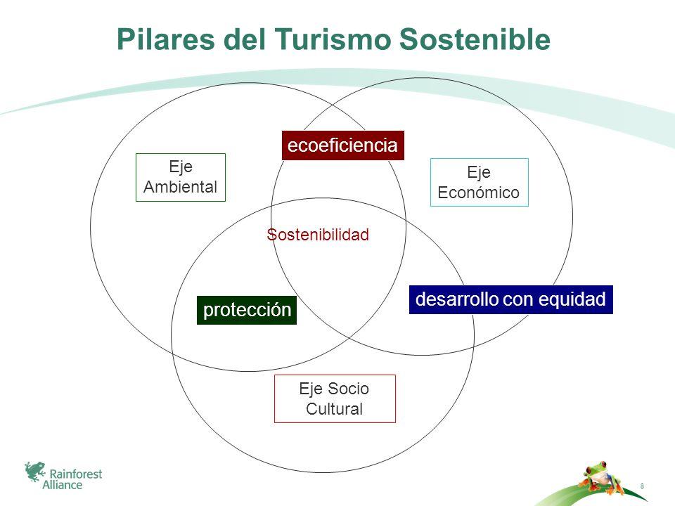 Nuestras metas: Mejorar la sostenibilidad de los negocios turísticos Construir interés en el consumidor y en los negocios, por el turismo sostenible Promover la aplicación de estándares en turismo sostenible, globalmente aceptados RAINFOREST ALLIANCE Y EL TURISMO SOSTENIBLE