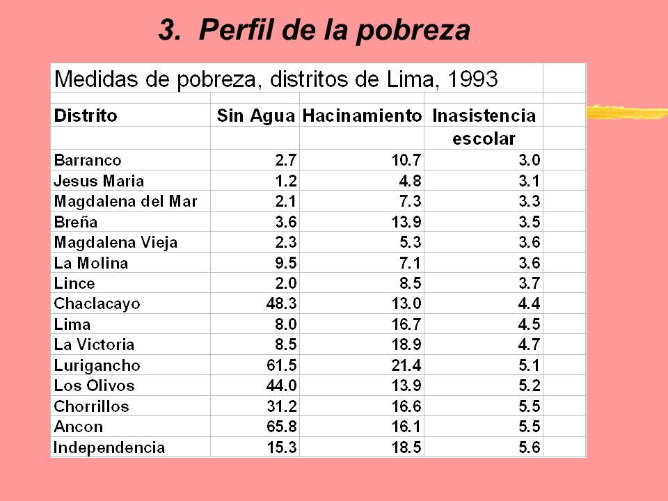 3. Perfil de la pobreza