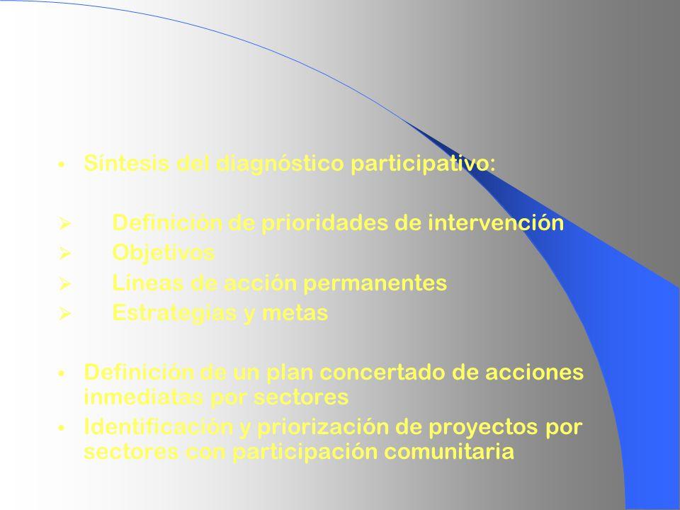 Síntesis del diagnóstico participativo: Definición de prioridades de intervención Objetivos Líneas de acción permanentes Estrategias y metas Definició