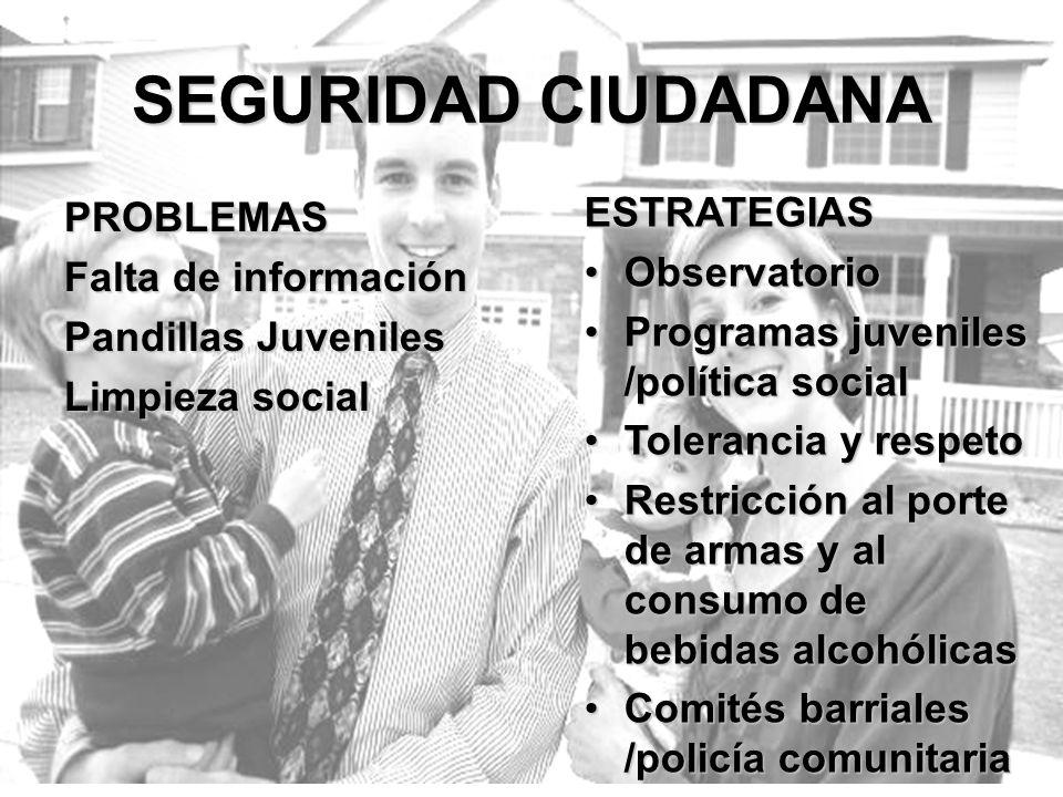 SEGURIDAD CIUDADANA PROBLEMAS Falta de información Pandillas Juveniles Limpieza social ESTRATEGIAS ObservatorioObservatorio Programas juveniles /polít
