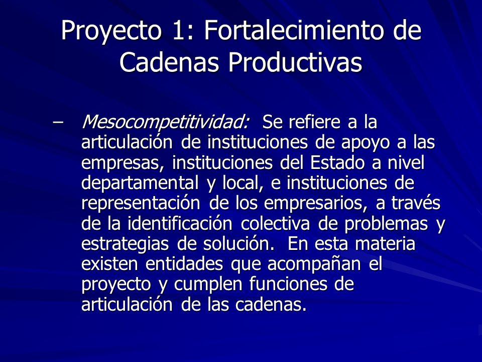 Proyecto 1: Fortalecimiento de Cadenas Productivas –Mesocompetitividad: Se refiere a la articulación de instituciones de apoyo a las empresas, instituciones del Estado a nivel departamental y local, e instituciones de representación de los empresarios, a través de la identificación colectiva de problemas y estrategias de solución.