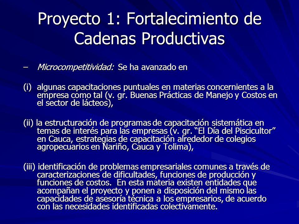 Proyecto 1: Fortalecimiento de Cadenas Productivas –Microcompetitividad: Se ha avanzado en (i)algunas capacitaciones puntuales en materias concernient